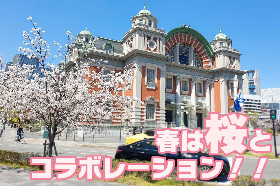 大阪市中央公会堂-111640-3