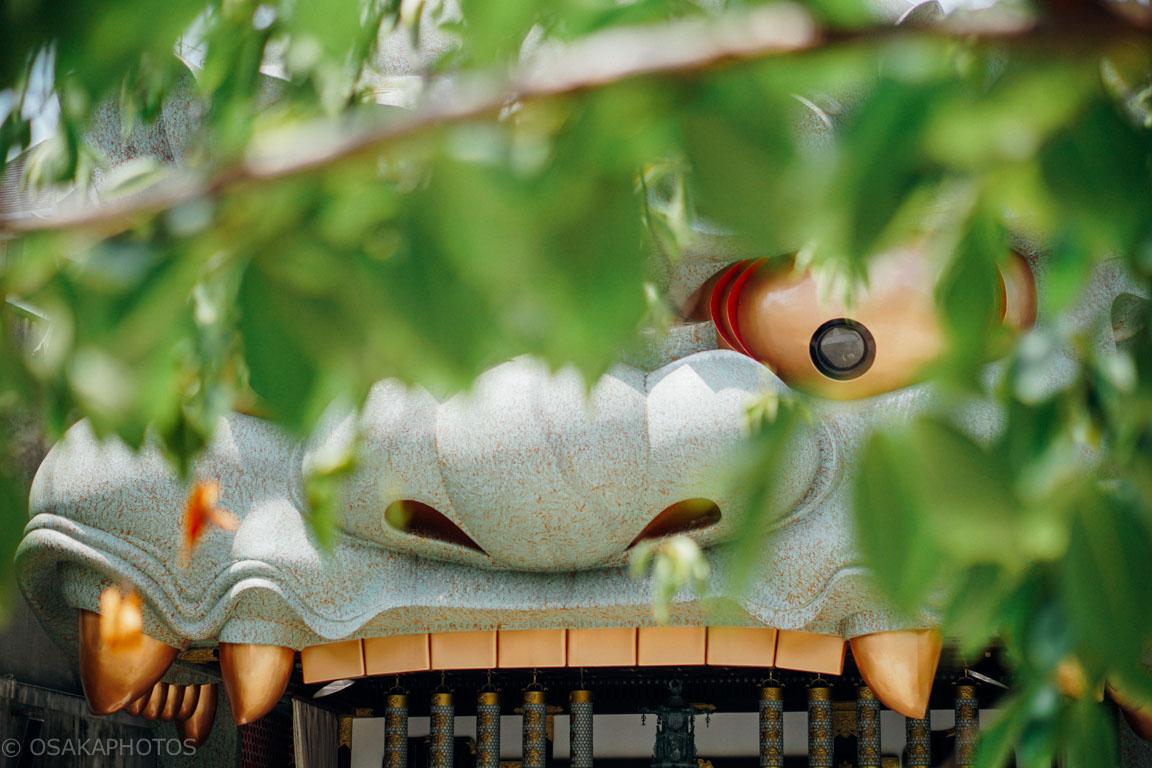 難波八阪神社-DSC00279