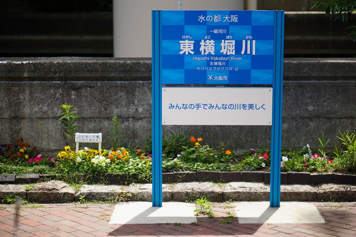 東横堀川-DSC07922