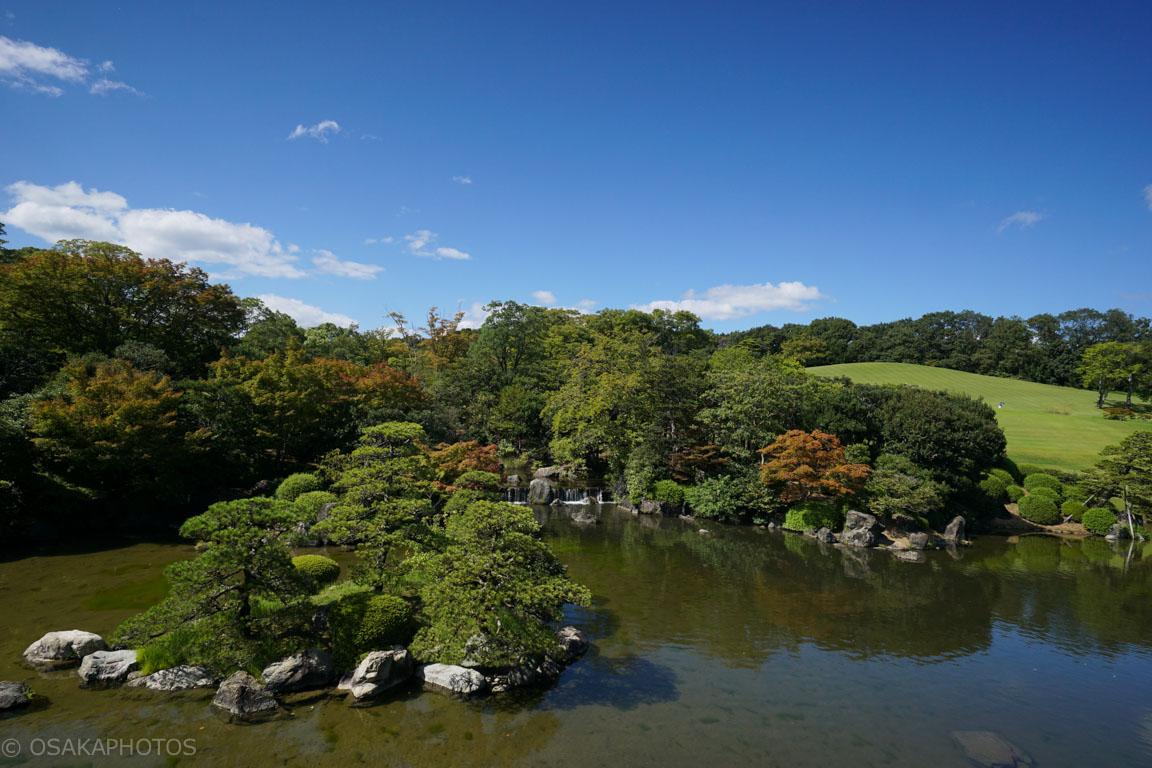 万博記念公園-DSC02537