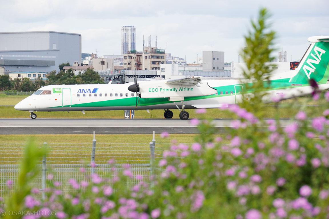 大阪伊丹空港-DSC01972
