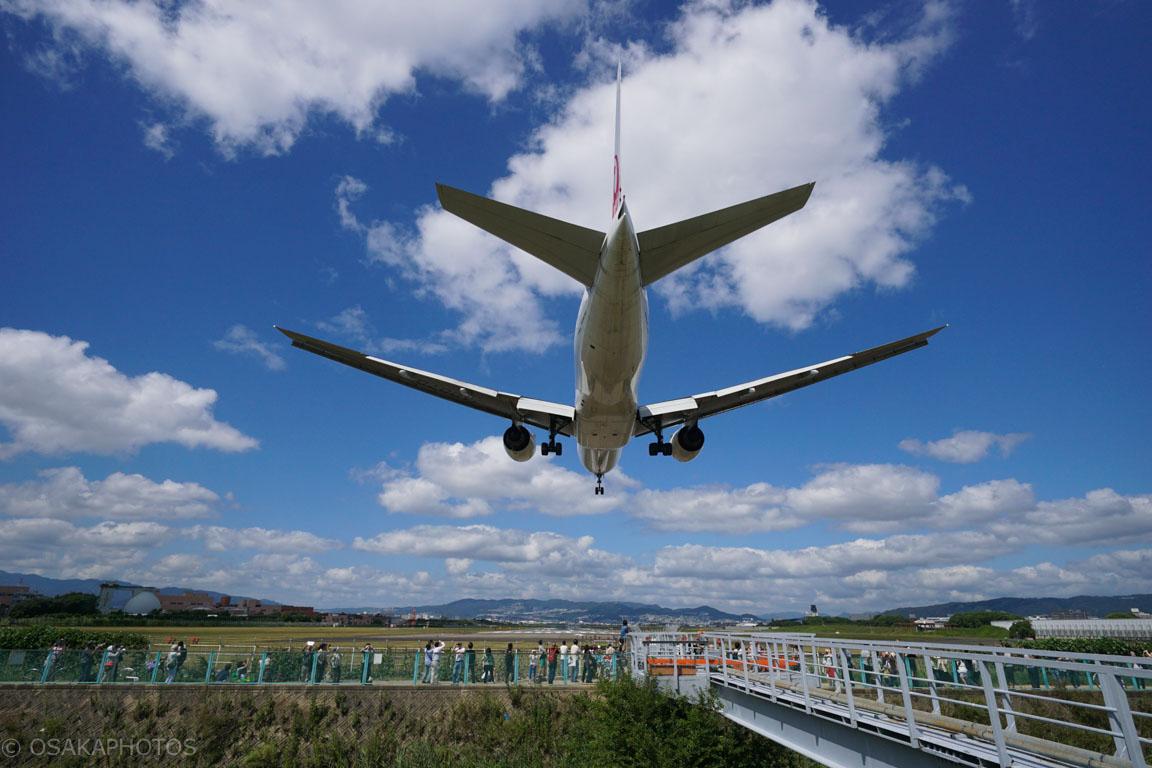 大阪伊丹空港-DSC02403
