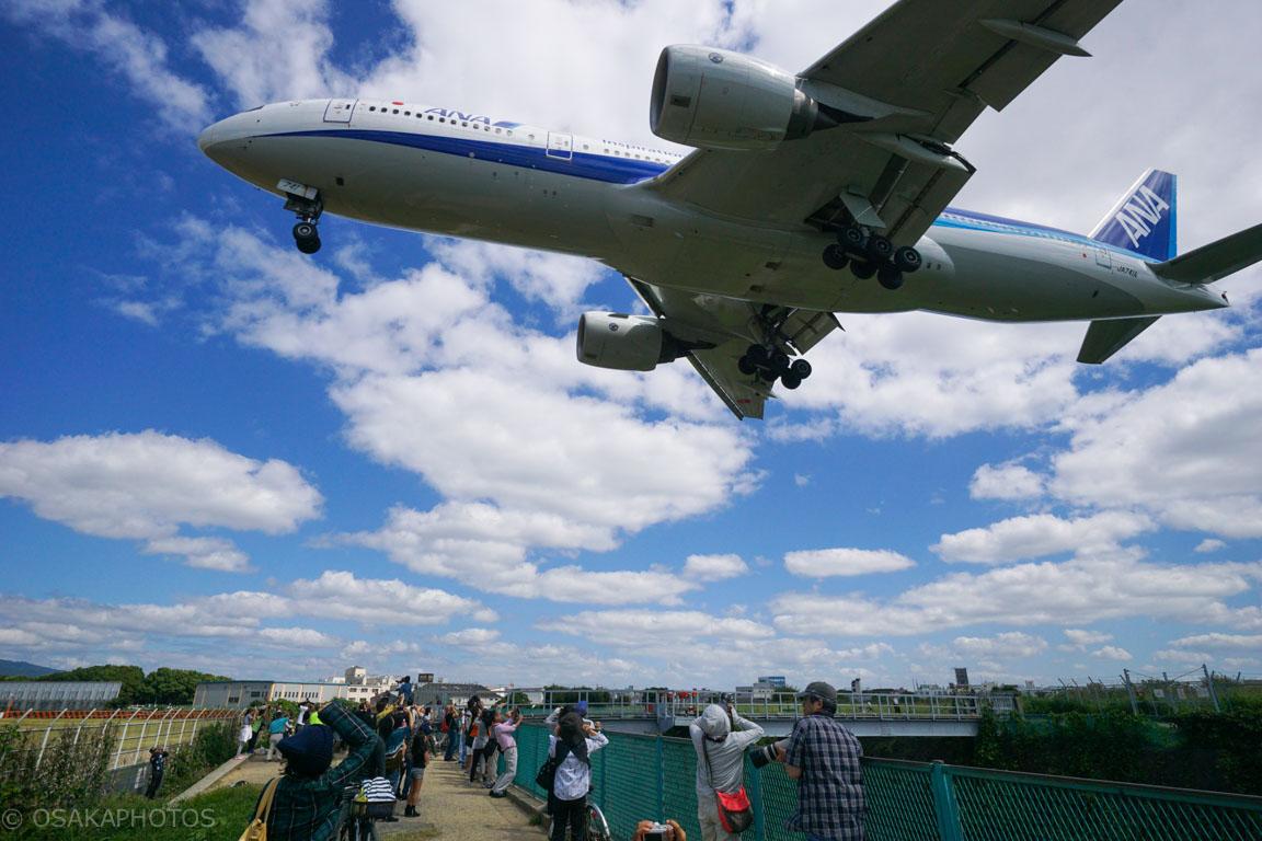 大阪伊丹空港-DSC02434
