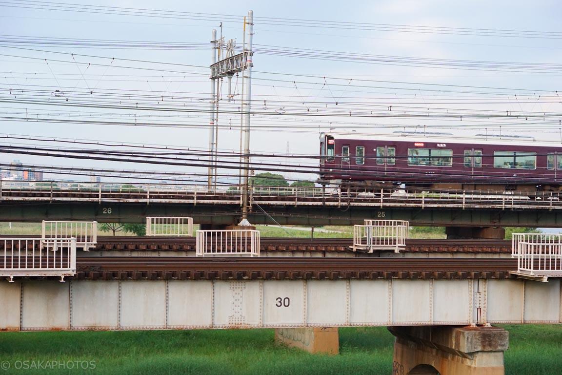 淀川-DSC00172