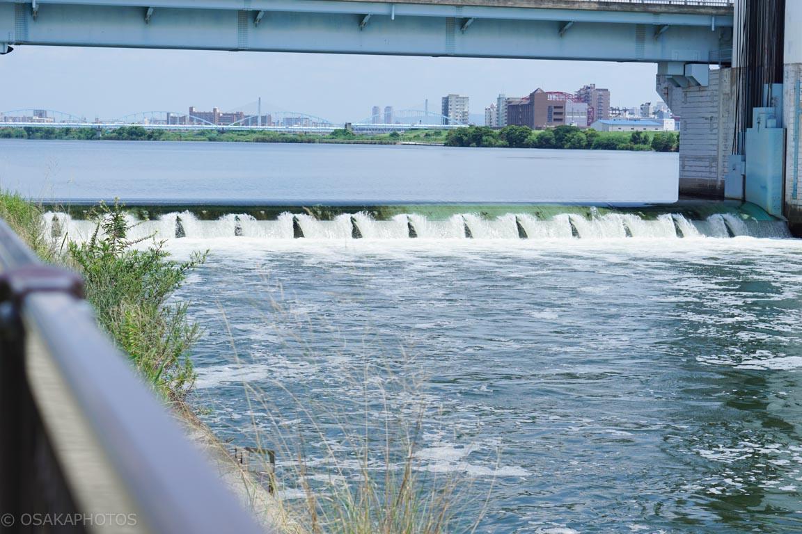 淀川-DSC01157