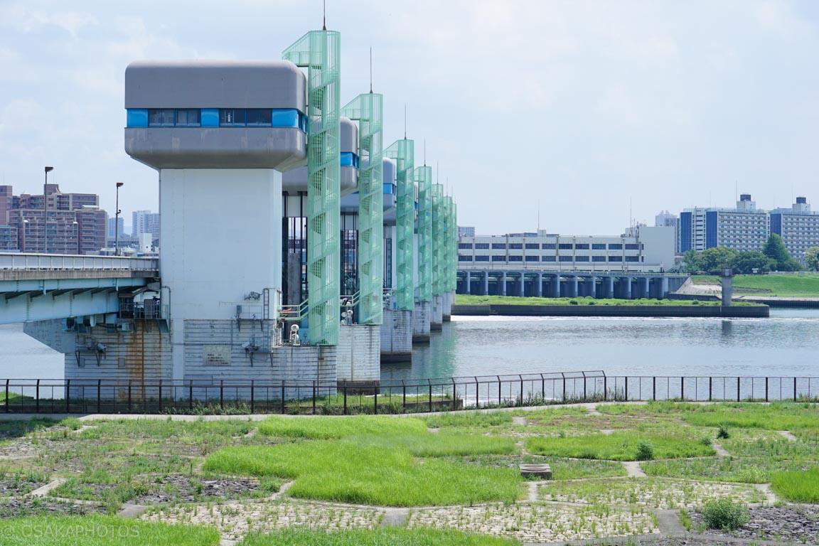 淀川-DSC01158