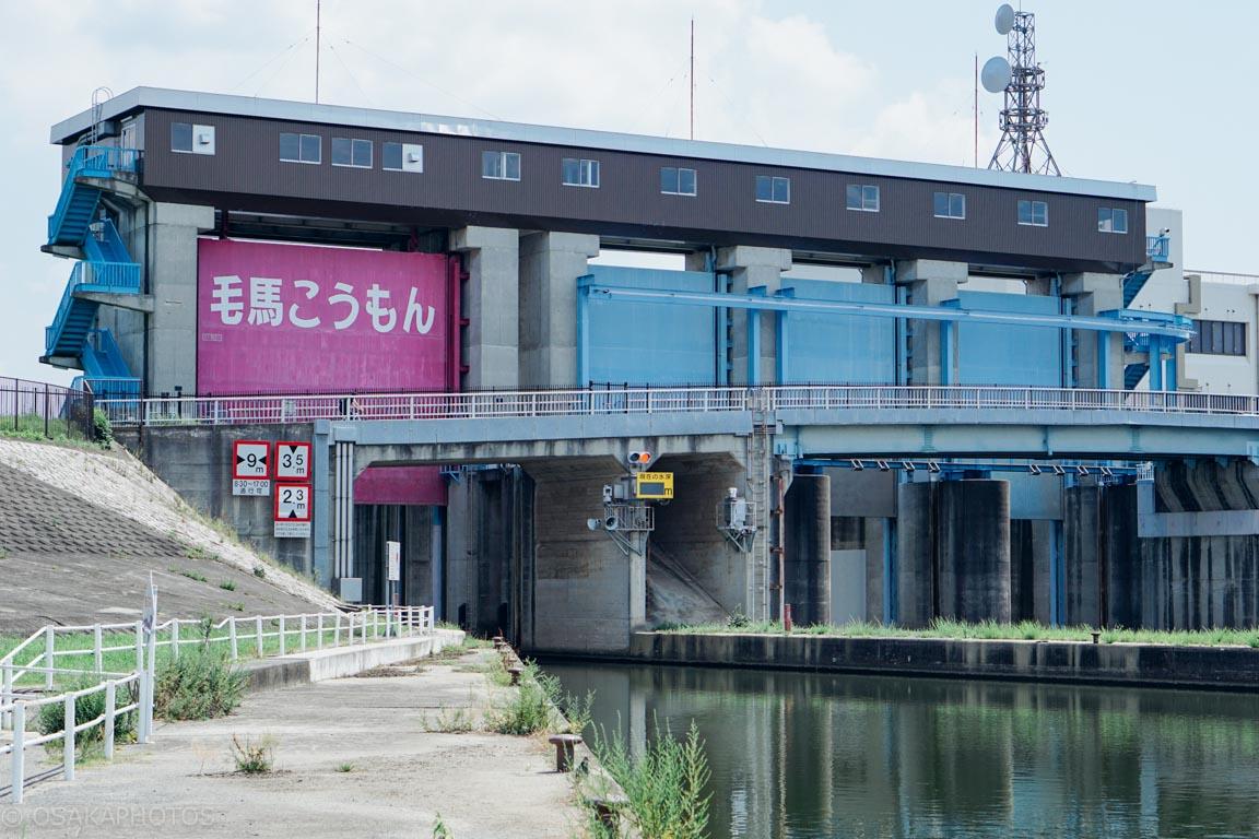 淀川-DSC01206