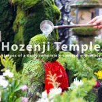 HozenjiTemple-02775