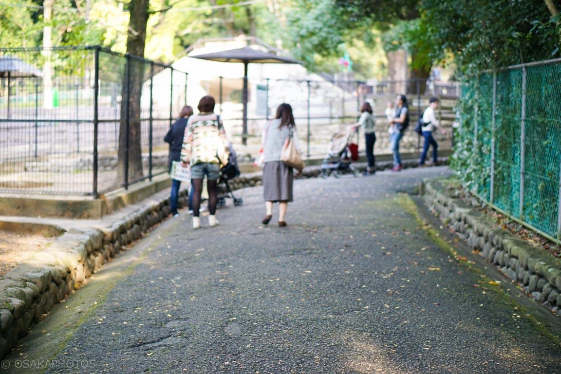 五月山公園-DSC03407
