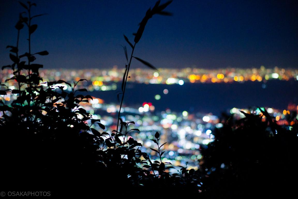 掬星台-DSC01385