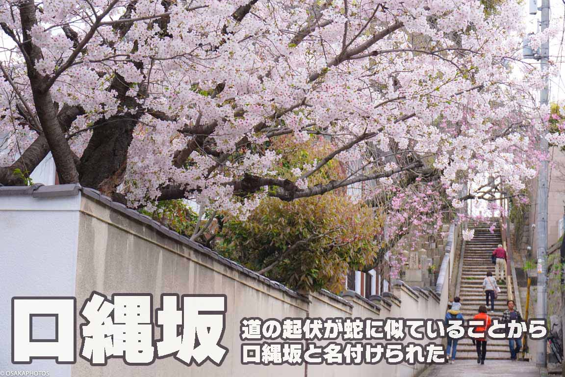 春の天王寺七坂-07915