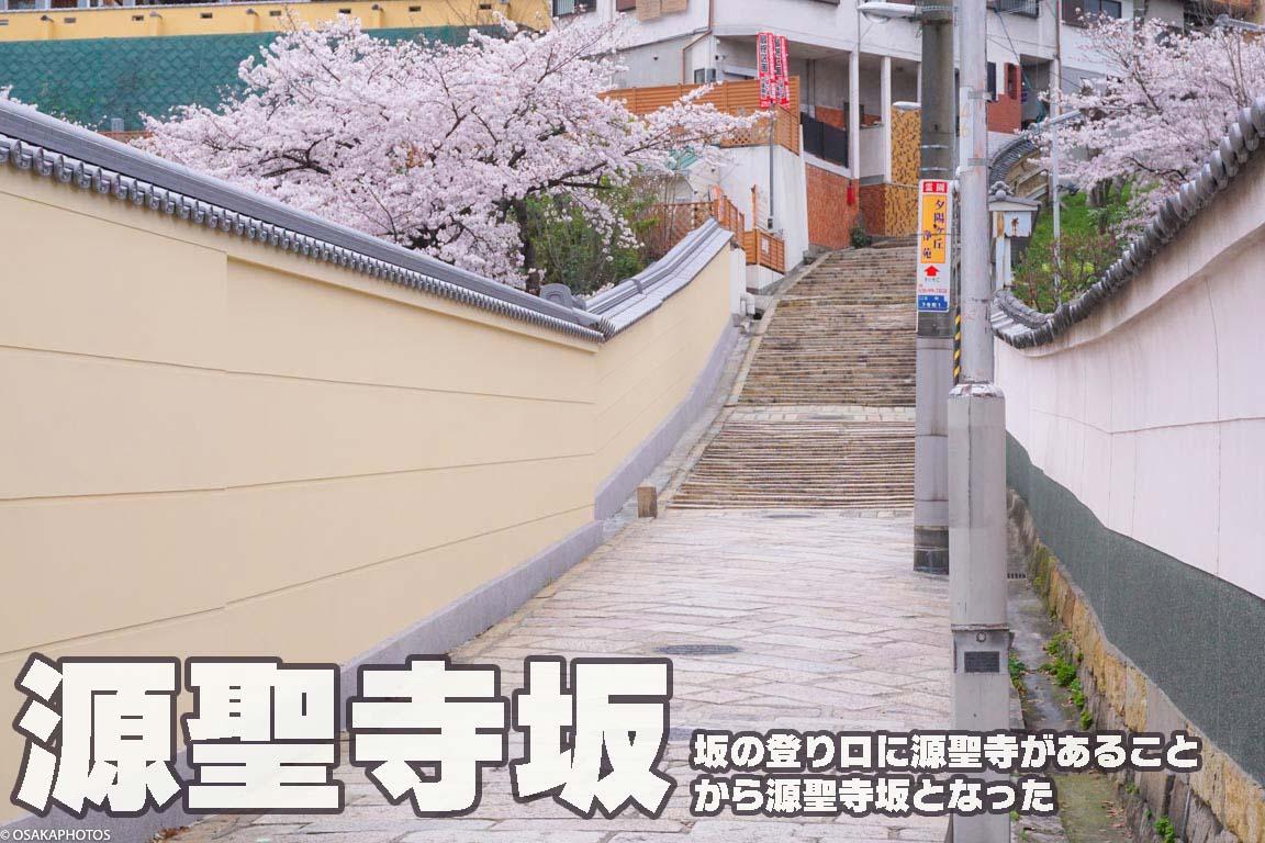 春の天王寺七坂-07917-2