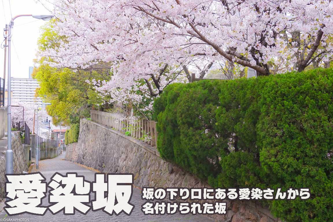 春の天王寺七坂-DSC07911