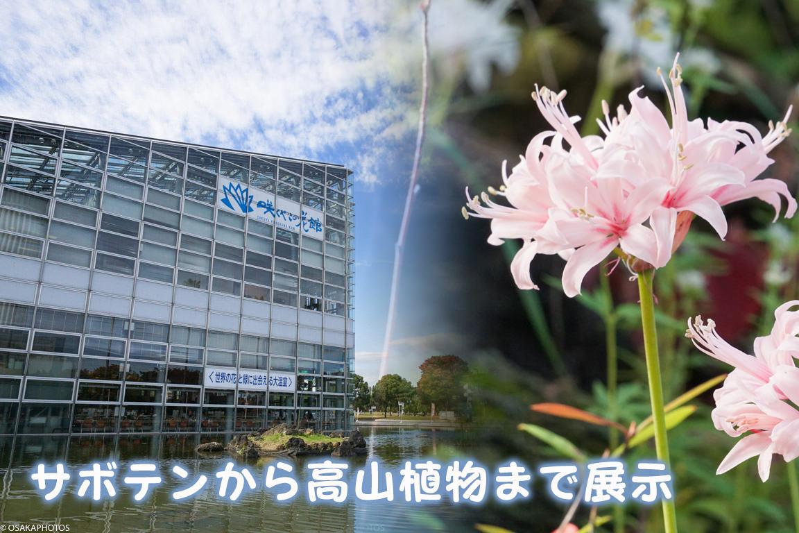 鶴見緑地-DSC04187-2