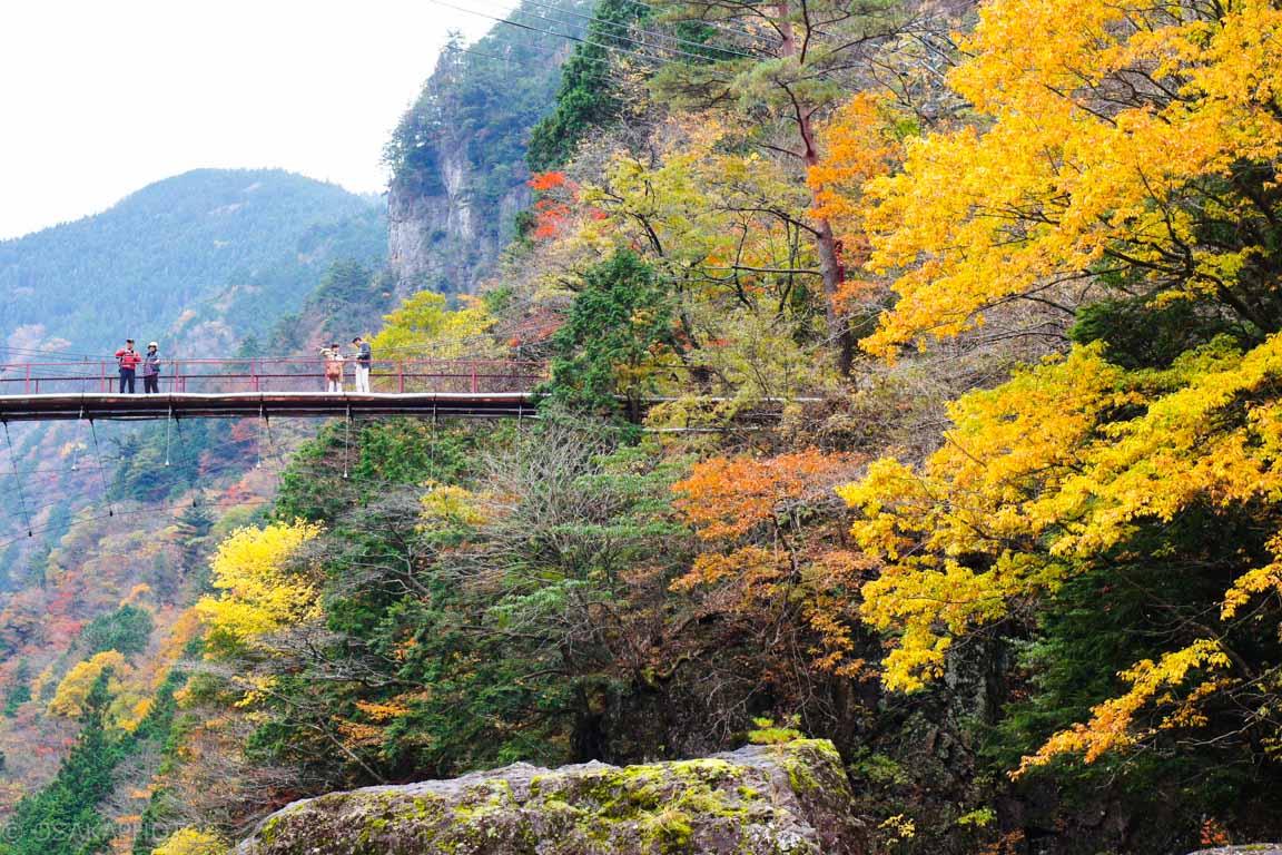 みたらい渓谷-DSC01590