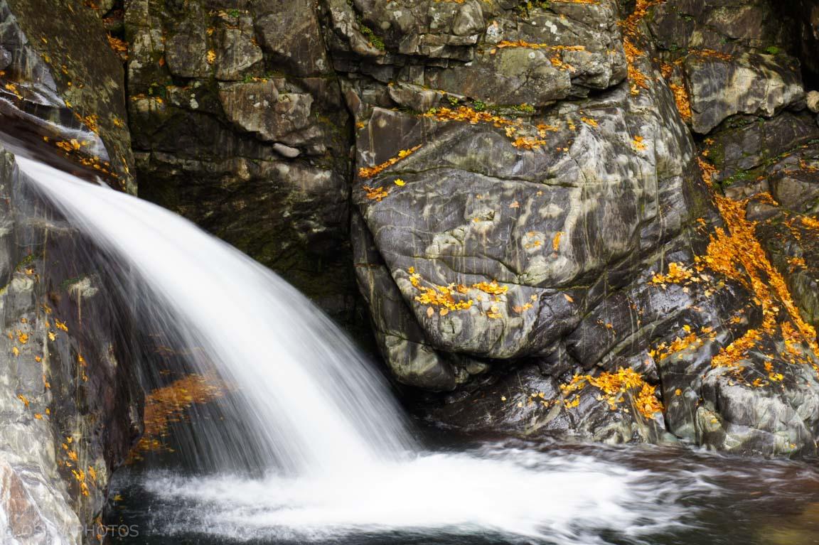 みたらい渓谷-DSC01609