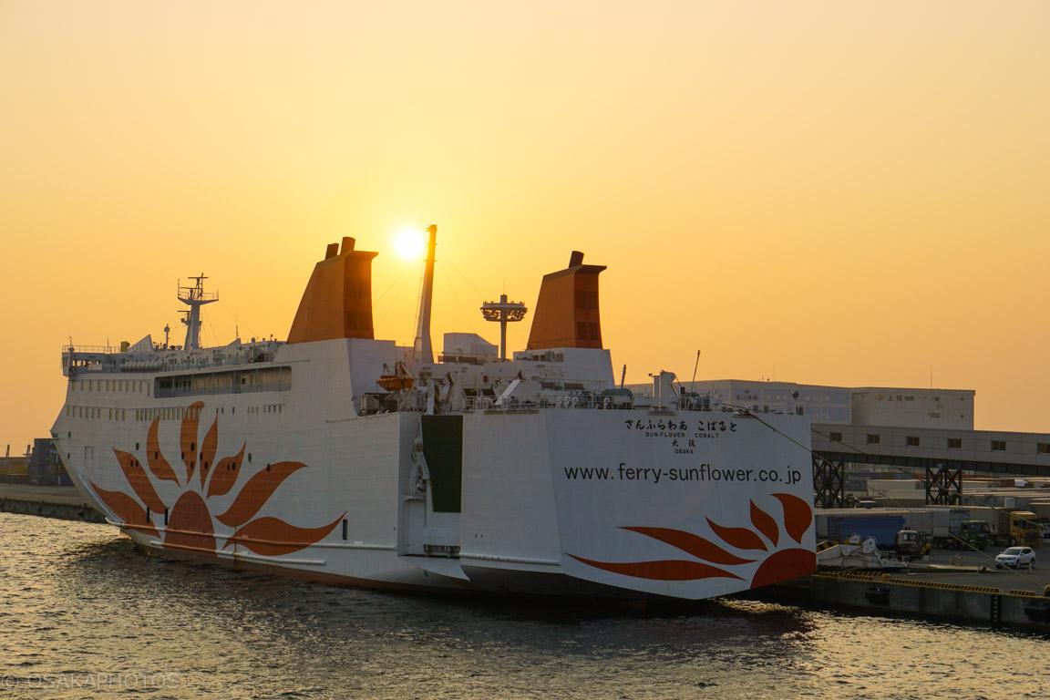 南港-DSC03743