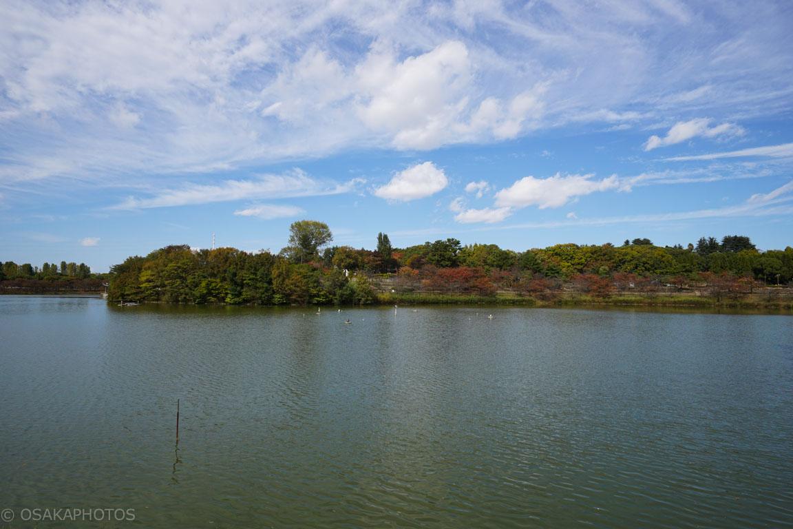 鶴見緑地-DSC04014
