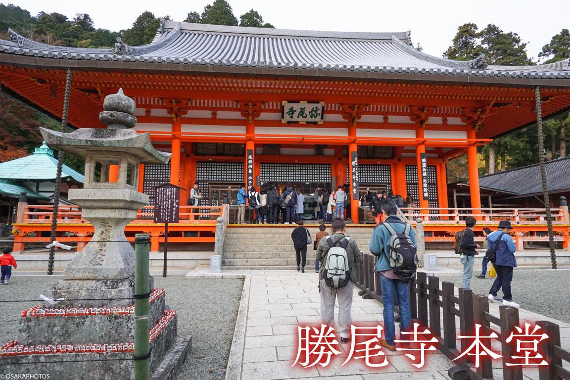 勝尾寺-DSC05271-2019