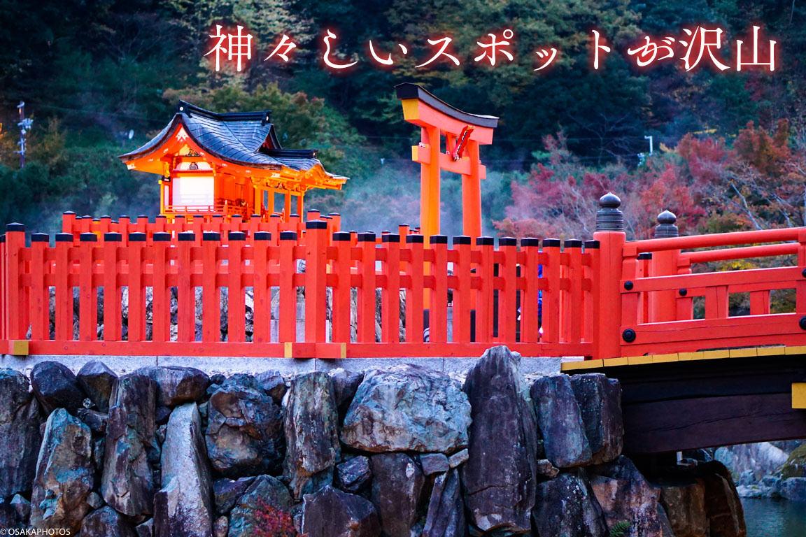勝尾寺-DSC05308-2019