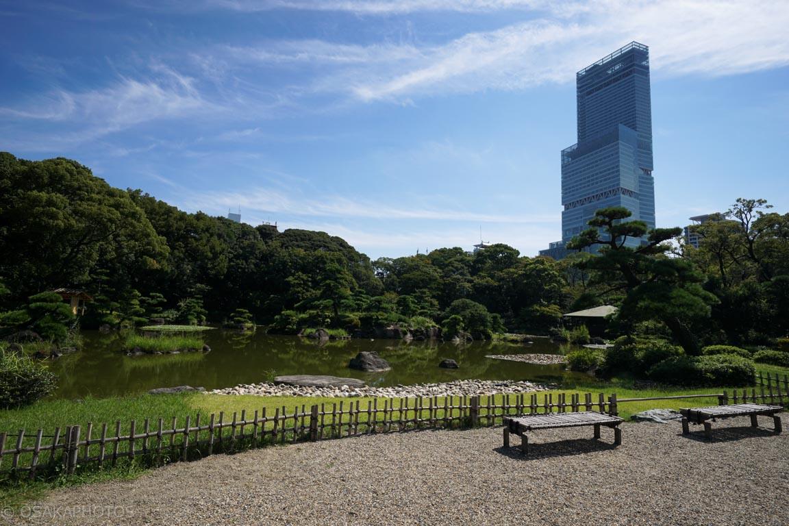 天王寺公園-DSC02681