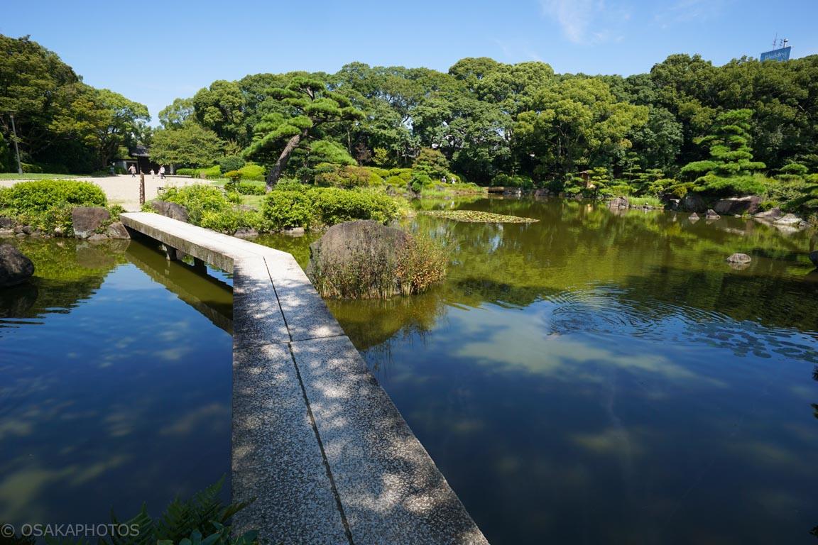 天王寺公園-DSC02695