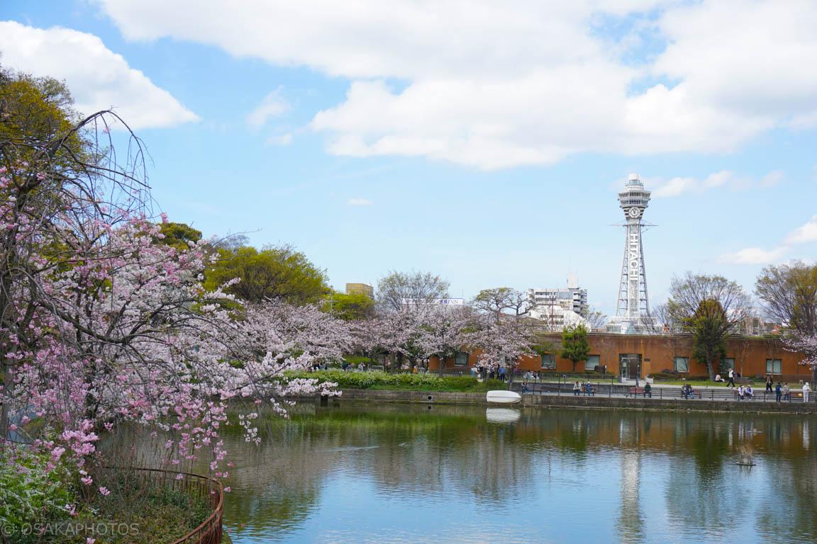 天王寺公園-DSC07215