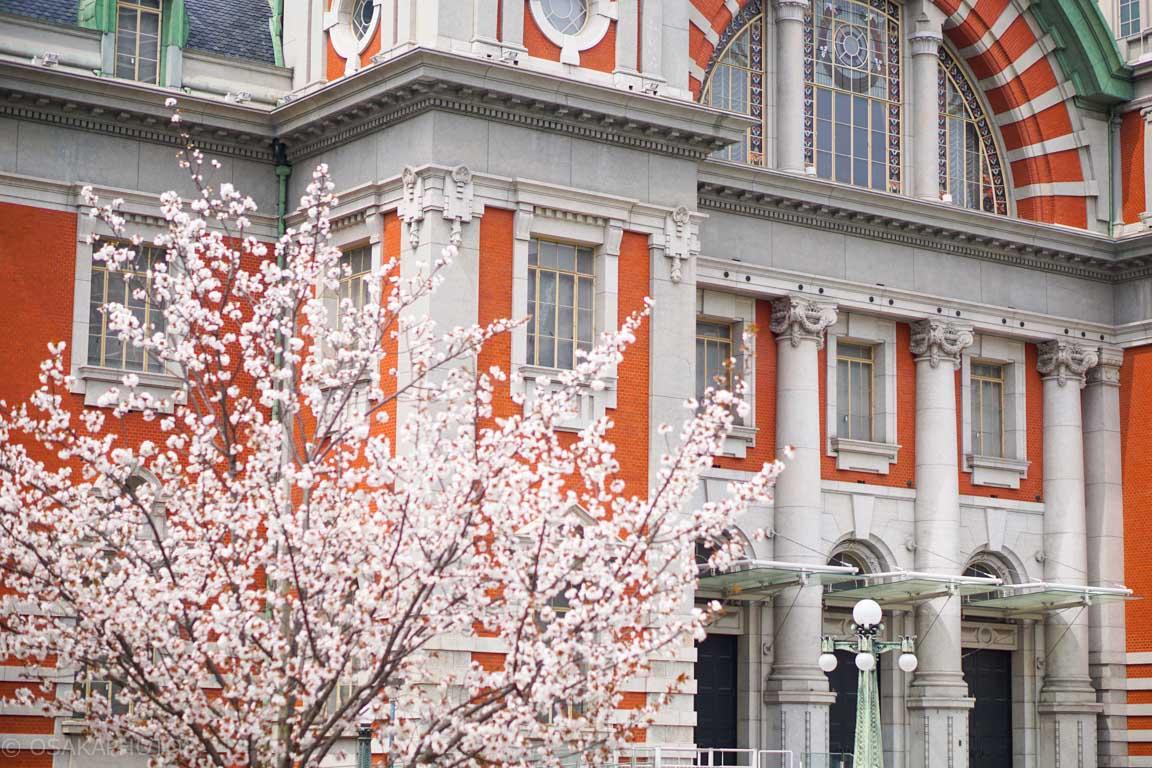 大阪市中央公会堂-DSC08233