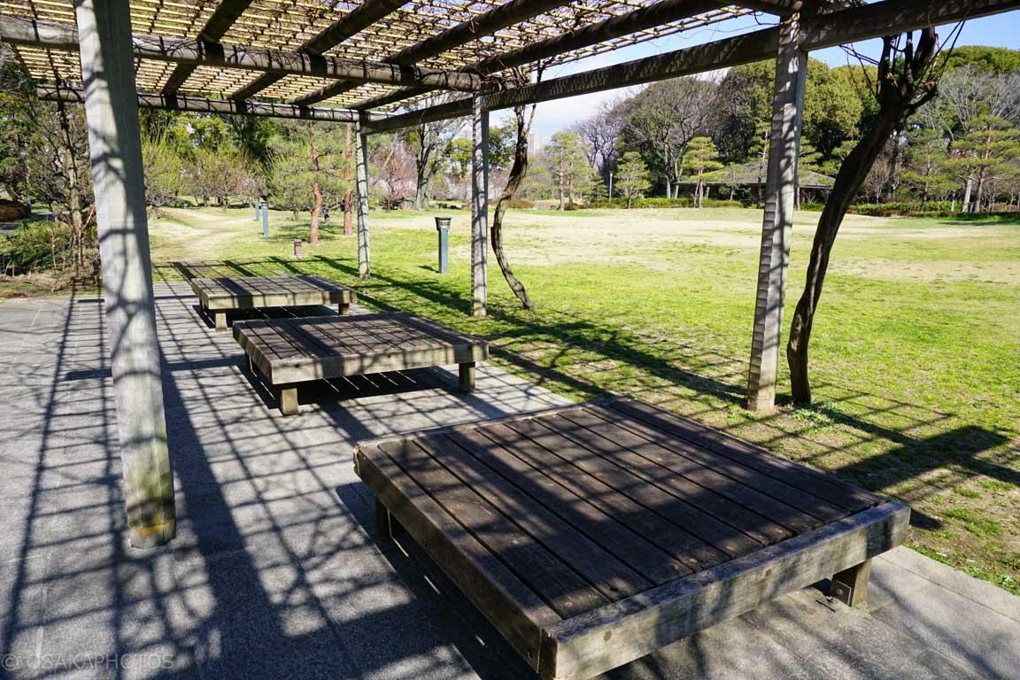 旧藤田邸跡公園-DSC06586
