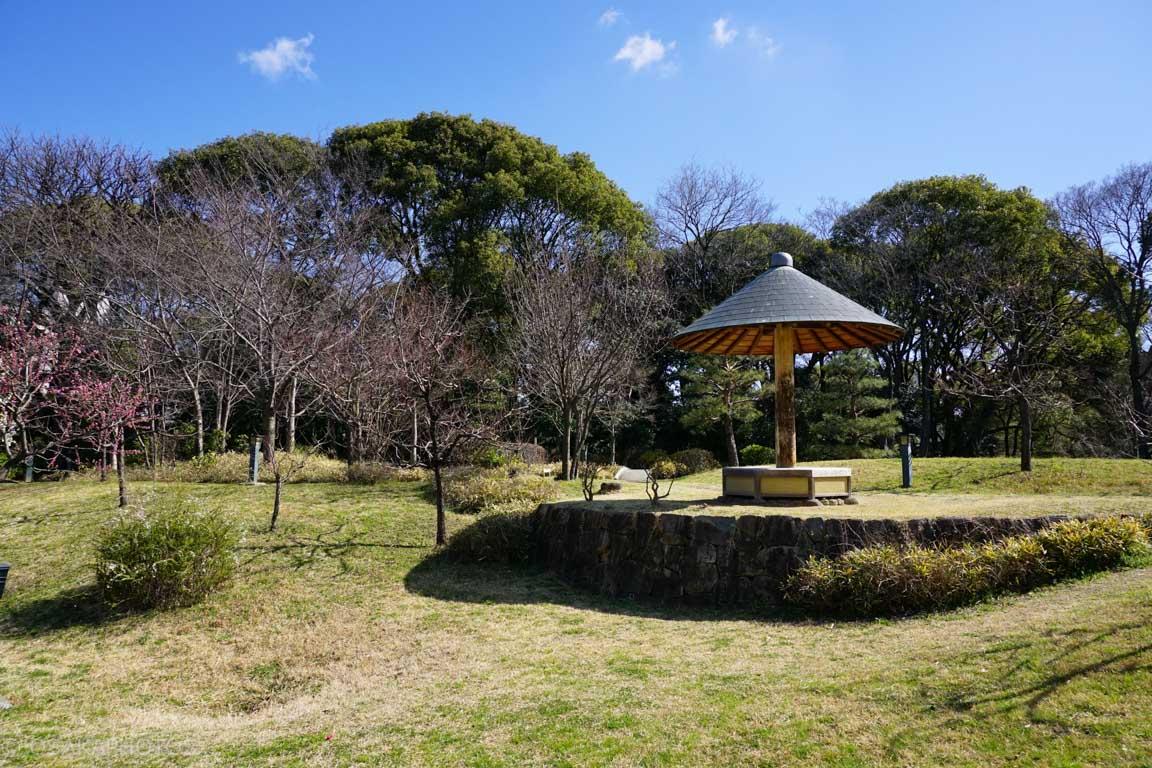 旧藤田邸跡公園-DSC06597