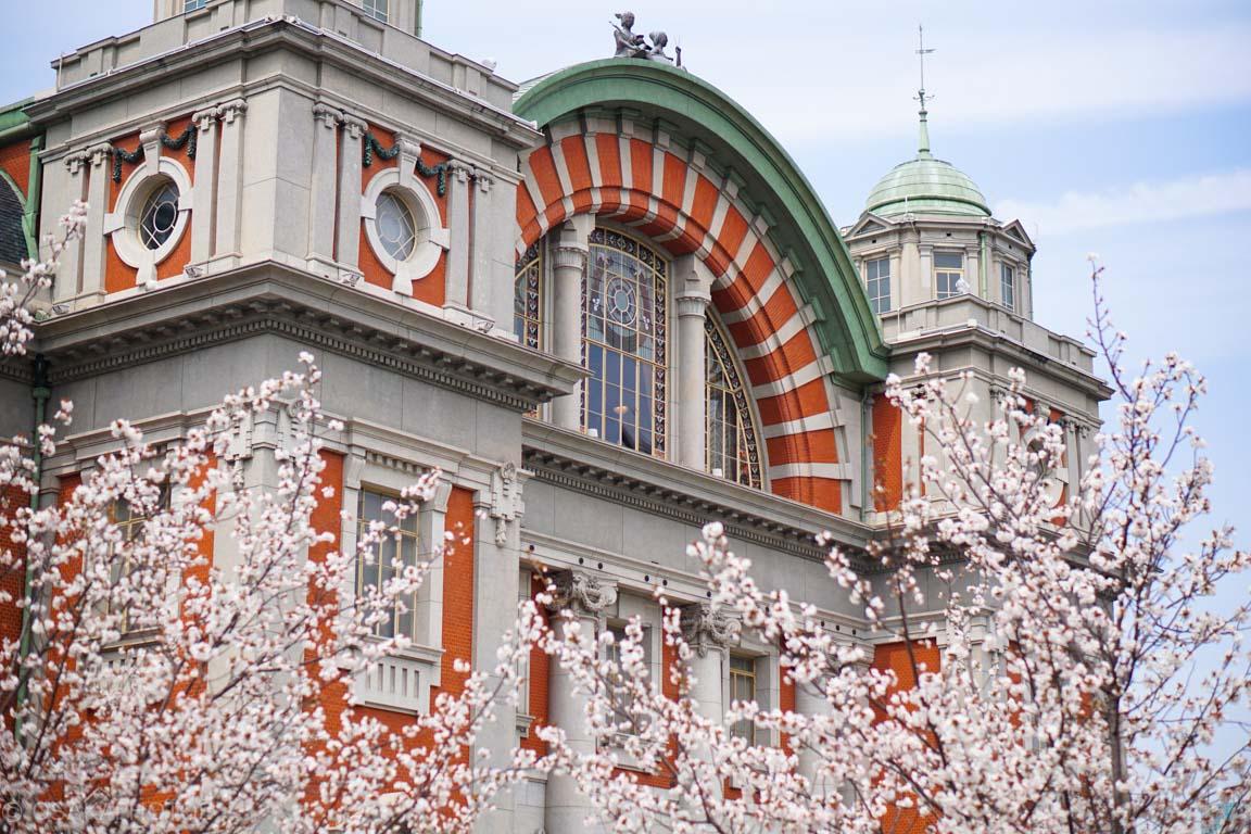 大阪市中央公会堂-DSC08249