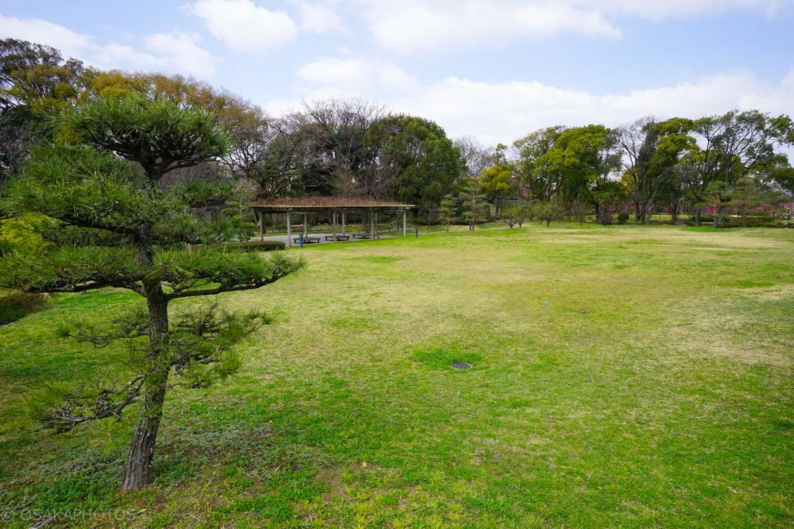 旧藤田邸跡公園-DSC06724
