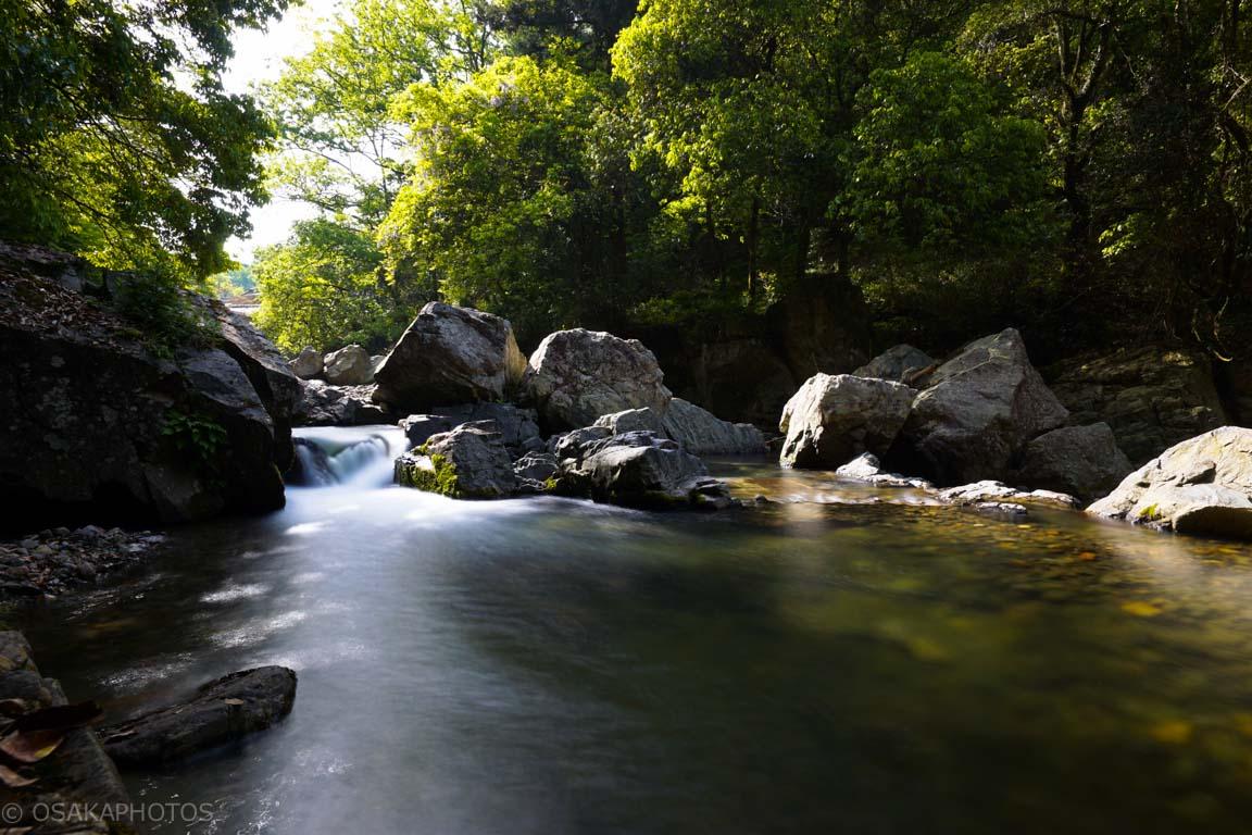 摂津峡公園-DSC09138
