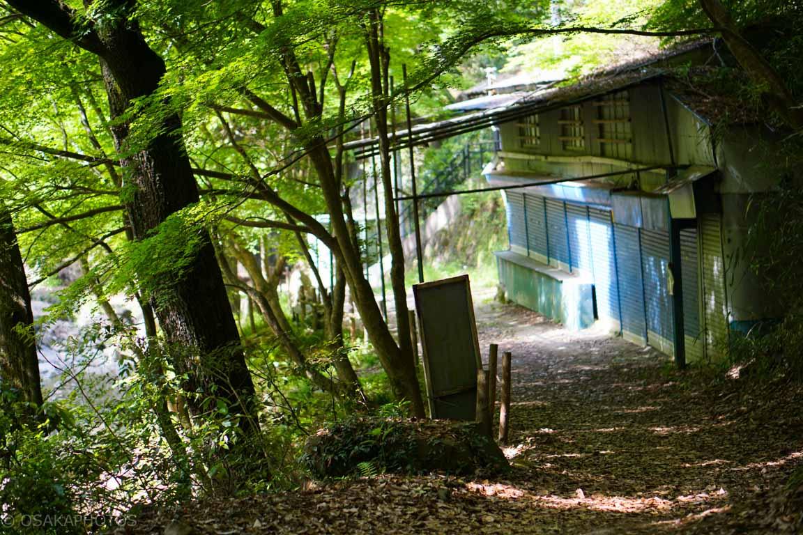 摂津峡公園-DSC09177