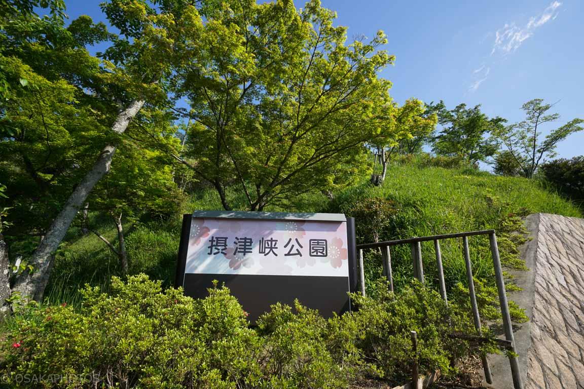 摂津峡公園-DSC09251