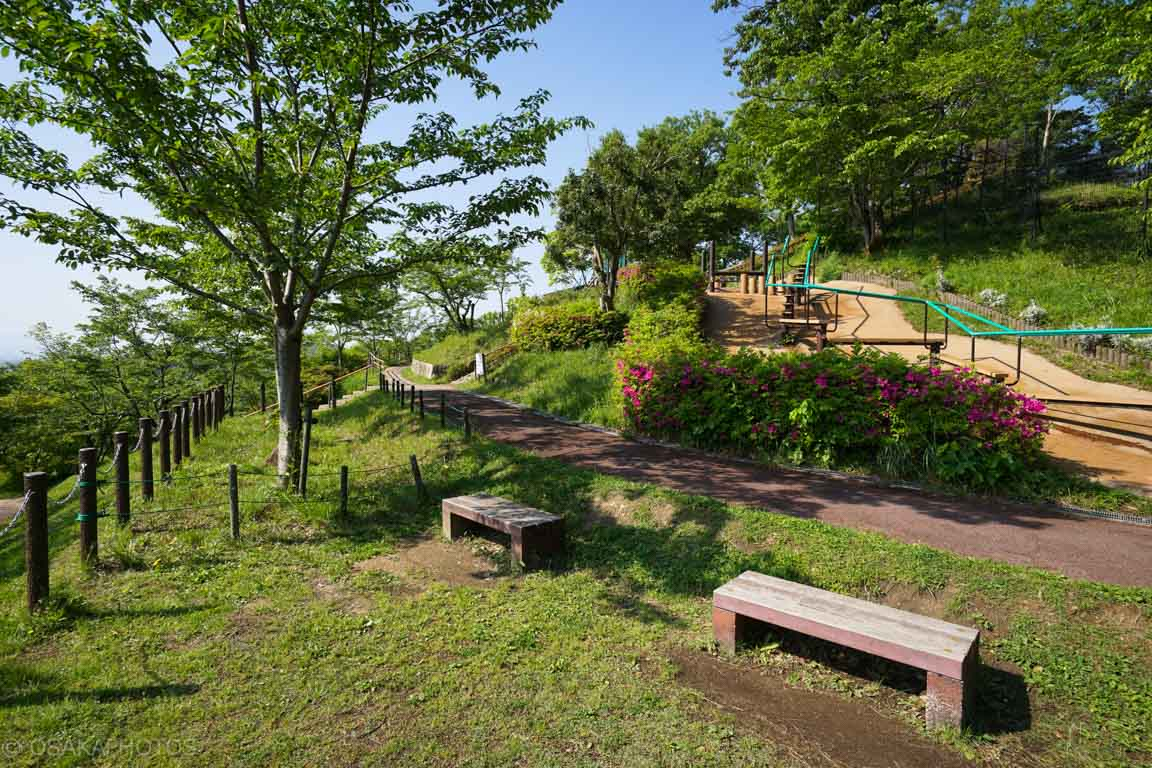 摂津峡公園-DSC09258