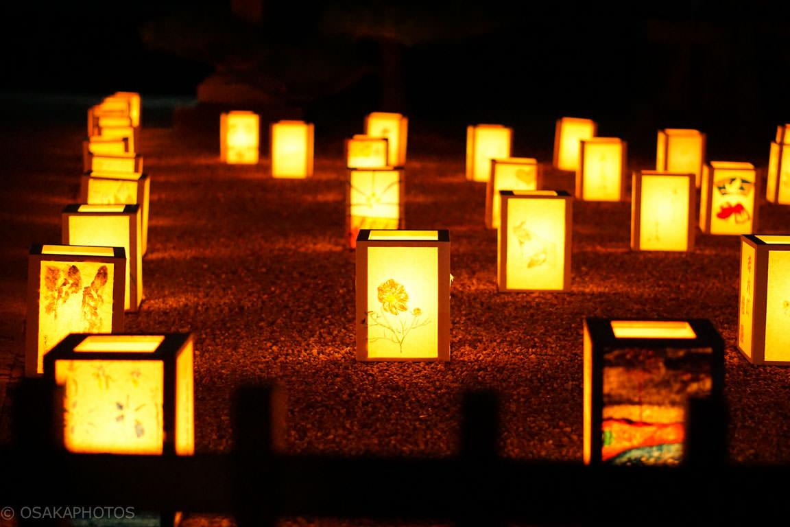 富田林寺内町燈路-DSC01837