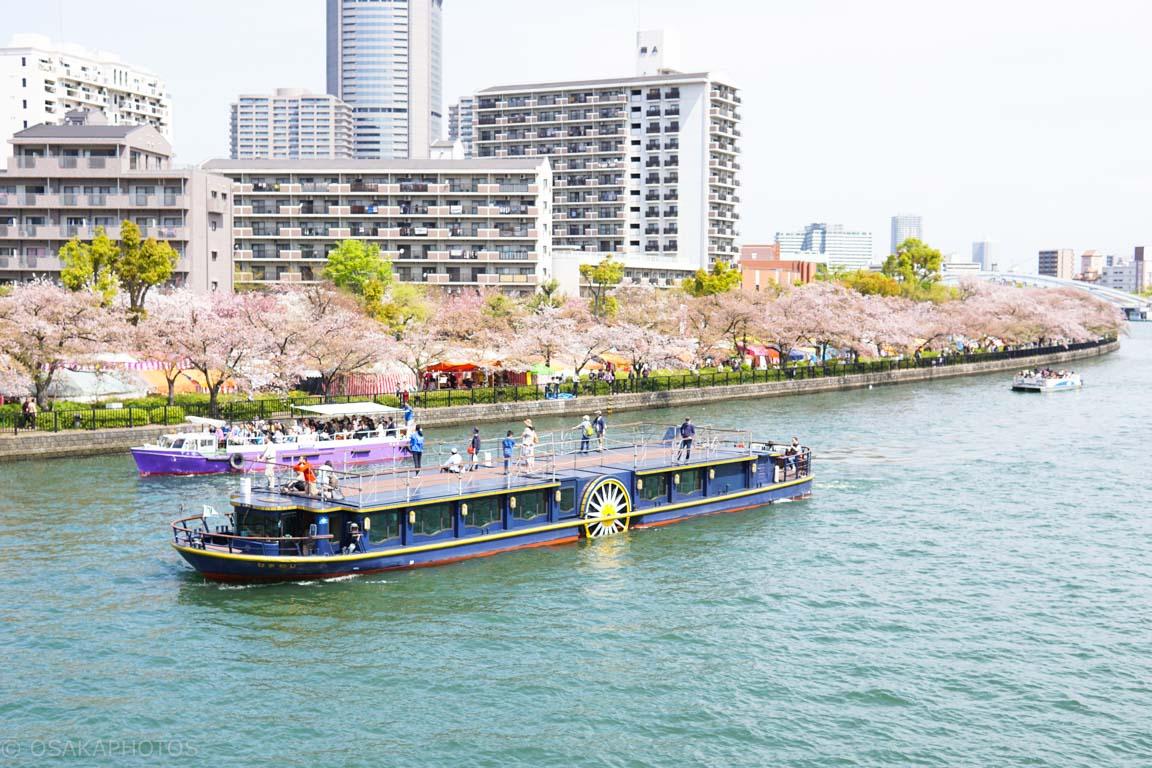 造幣局桜の通り抜け-DSC08693