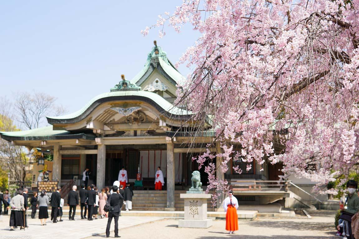 豊国神社での結婚式
