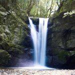 滝畑四十八滝-DSC09203-2