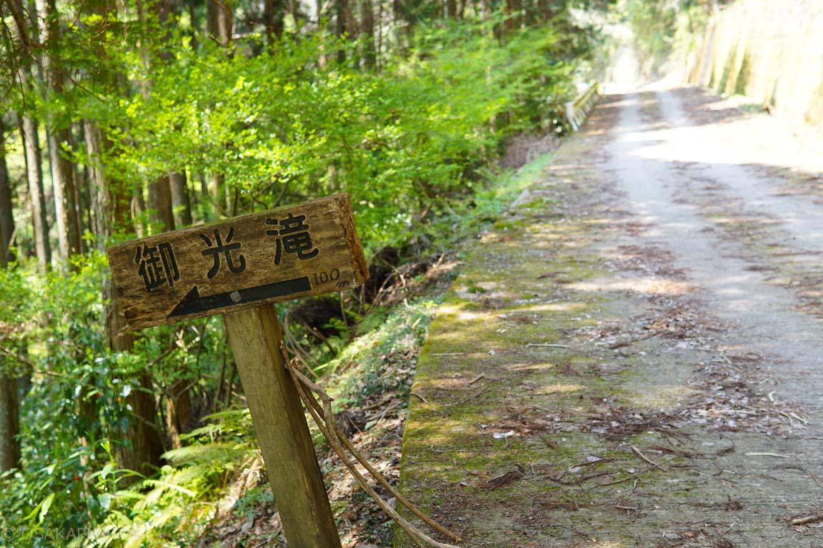 滝畑四十八滝-DSC09303