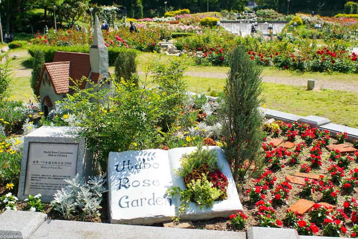 Rose Garden-07107