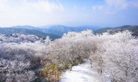 雪景色を求めて金剛山へ