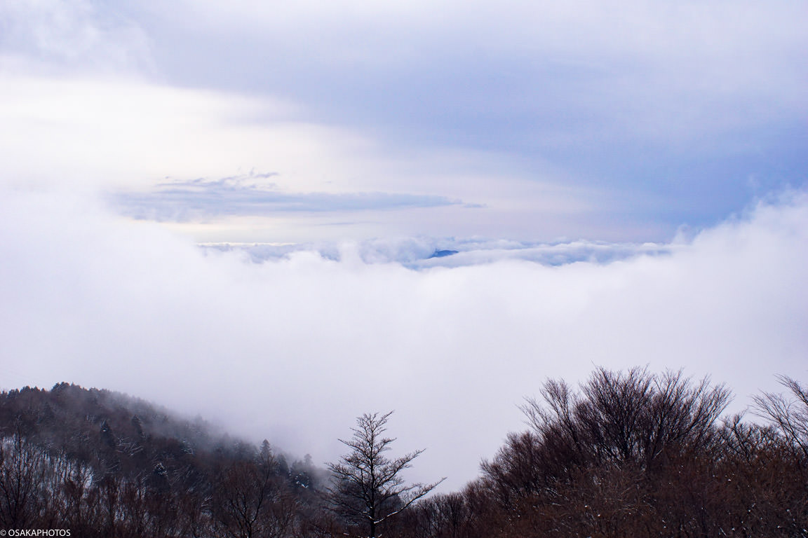 大阪金剛山雲海-8