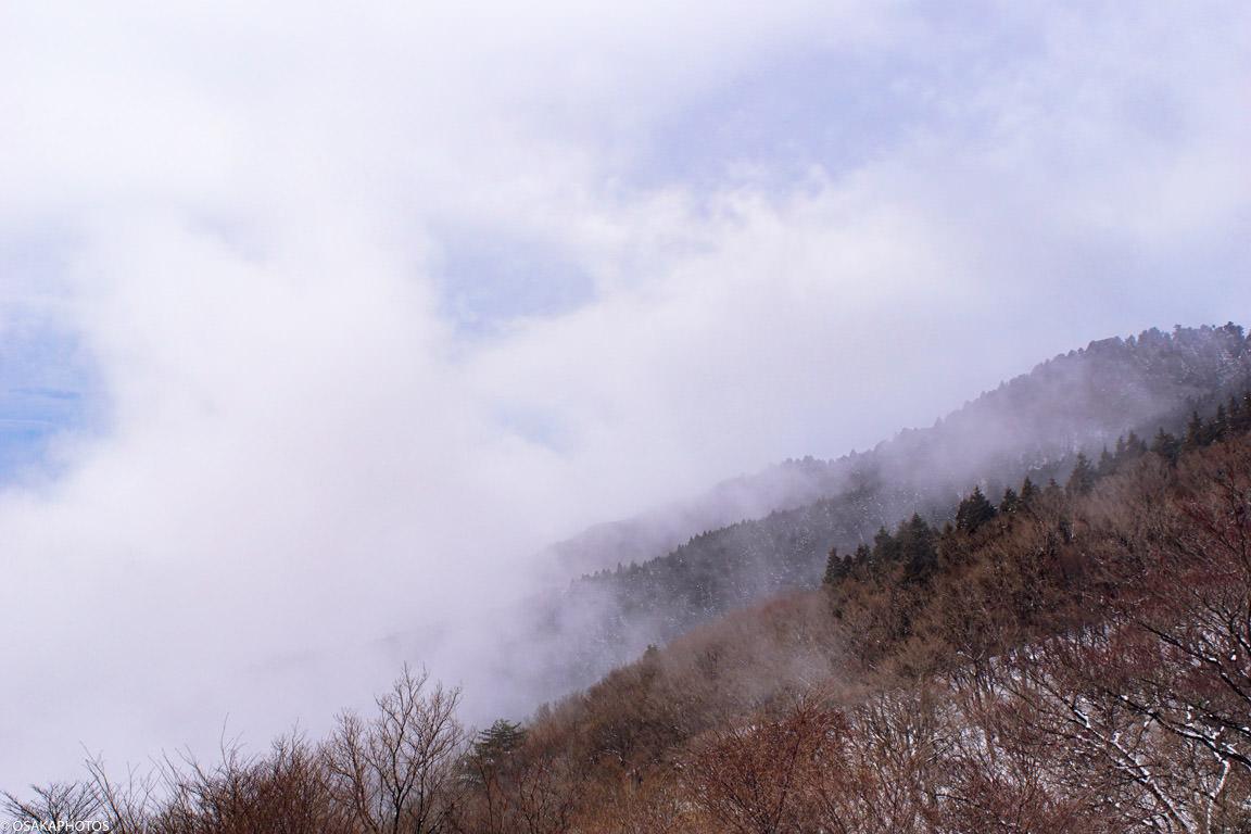 大阪金剛山雲海-9