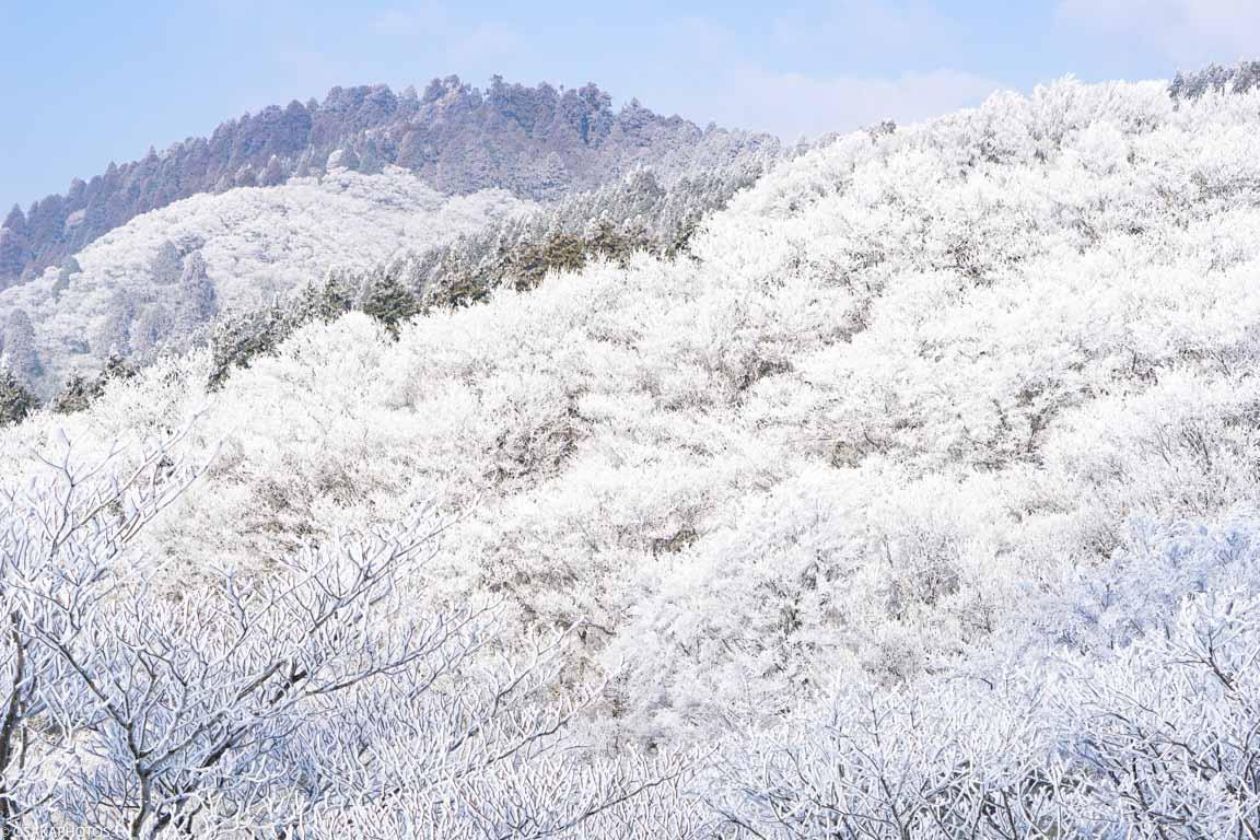 冬の金剛山-12