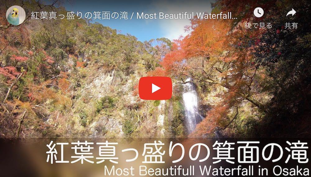 箕面の滝動画サムネイル