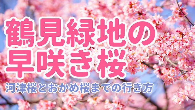 鶴見緑地の早咲桜サムネイル-1152