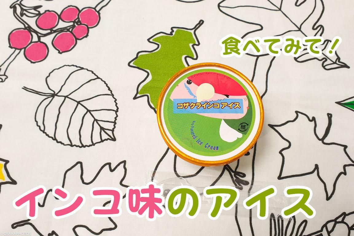 小鳥のアートフェスタ-110948